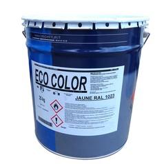 Peinture colorée ECO COLOR